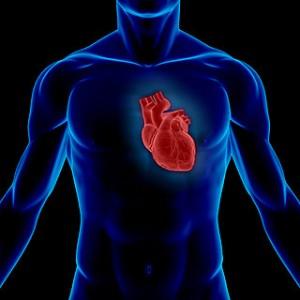 stem cell heart treatment