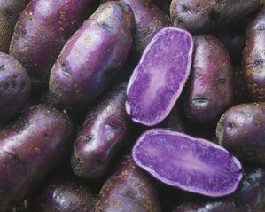 purple totato health benefits