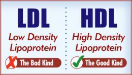 good cholesterol prevents alzheimers