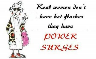 surviving hot flashes